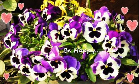 幸せのお花2#9829;