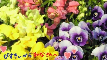 幸せのお花#9829;