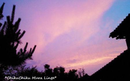 ピンク色に染まった空#9829;