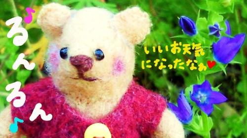 お花さんとメイプルくん★