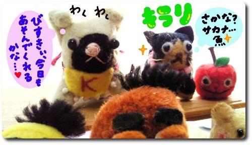 びすきぃへのお願い5★