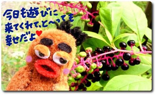 お花とびすきぃ2☆