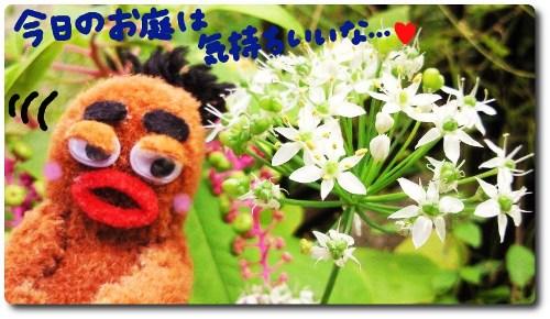 お花とびすきぃ☆