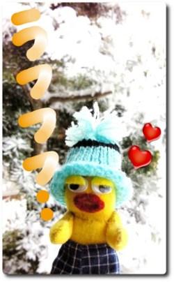 雪の中のとらちゃん☆