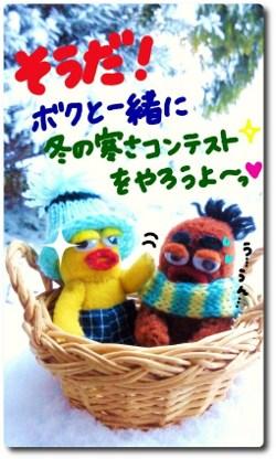 雪の中の仲間たち4☆