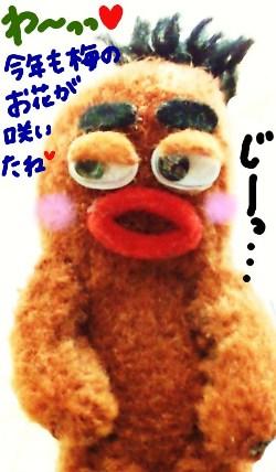 びすきぃの日向ぼっこ☆