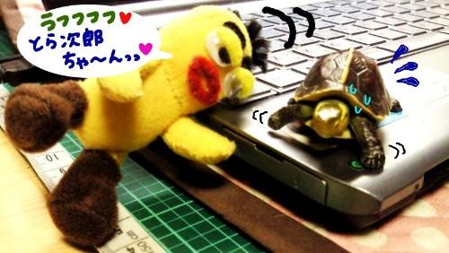 とら次郎とお遊び2☆
