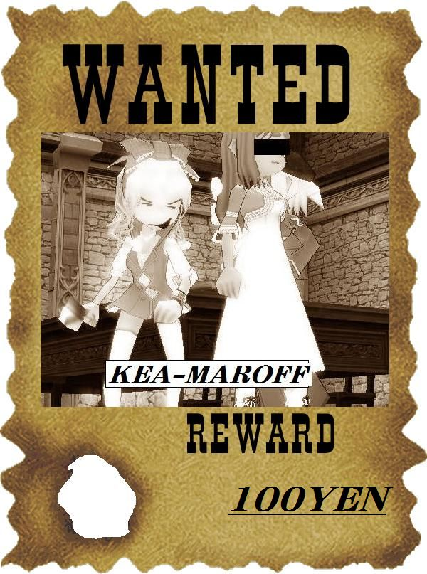 wanted-poster_20100329015432.jpg