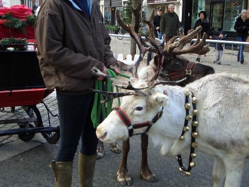 BELGRAVIA CHRISTMAS SUNDAY