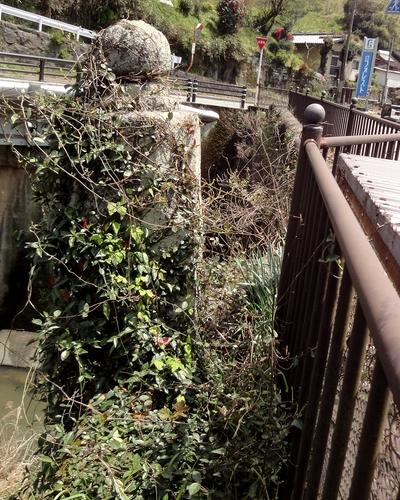 230423 高井川橋4
