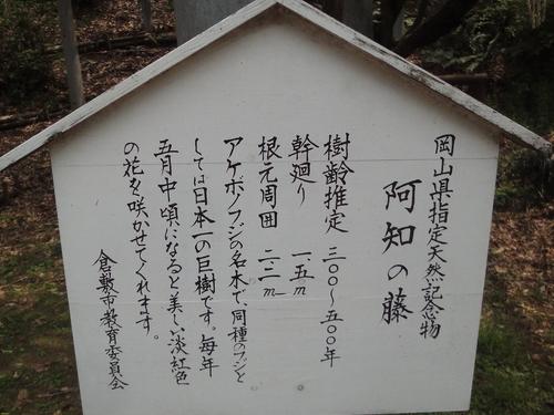 230430 阿智神社14