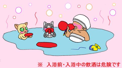 猫と風呂酒