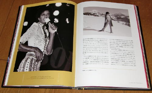 MJ Treasure NAKAMI