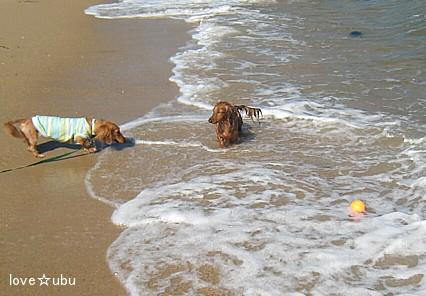 みんなでビーチ⑤
