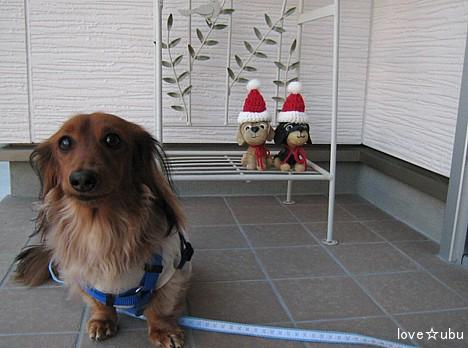 クリスマスっぽく②