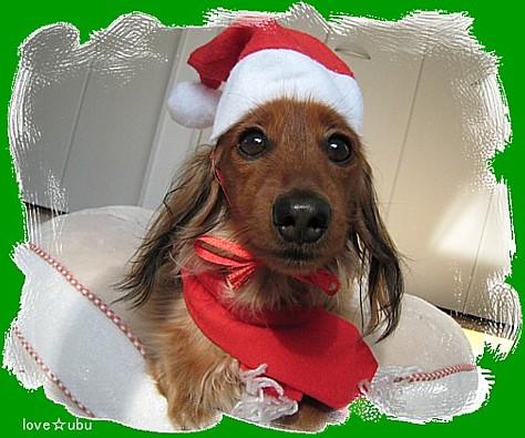 クリスマス-2010-