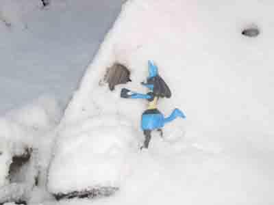 ルカリオ雪3