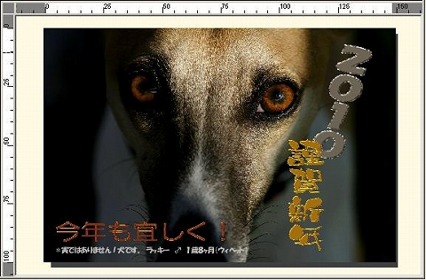 SS-hi_nennga.jpg