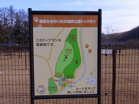 ss-001_20110103100335.jpg