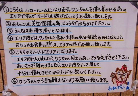 ss-003_20110103100334.jpg