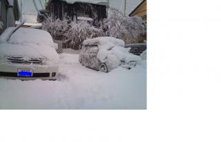 20110101豪雪