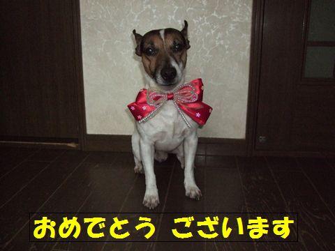 DSCFga-na.jpg