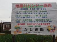 09-pan-2.jpg