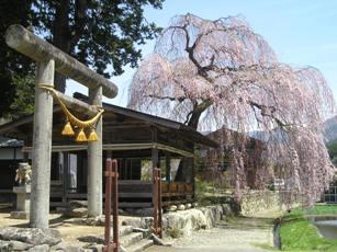青屋の神明神社