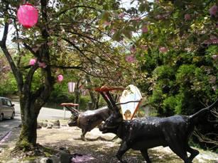倶利伽羅県定公園2
