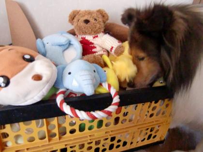 おもちゃ箱3