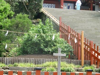夏の鎌倉15