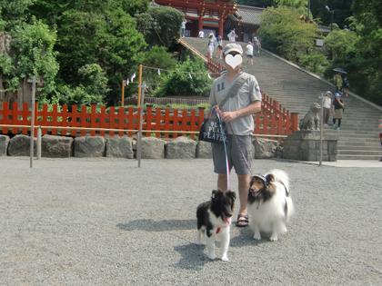 夏の鎌倉16