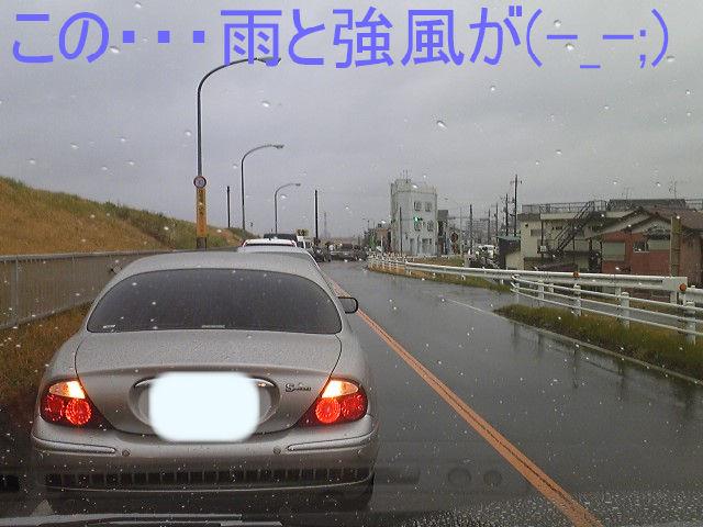 SH370095.jpg