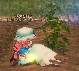 mabinogi_2009_11_12_001.jpg
