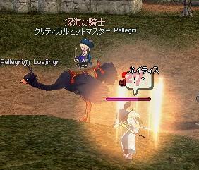 mabinogi_2009_11_13_010.jpg