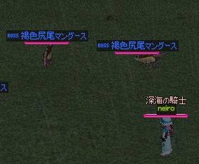 mabinogi_2009_11_13_016.jpg