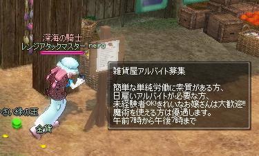 mabinogi_2009_11_29_009.jpg