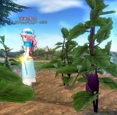 mabinogi_2009_11_29_016.jpg