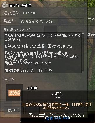 mabinogi_2009_12_01_002.jpg