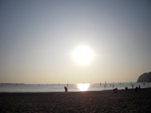 11月7日海