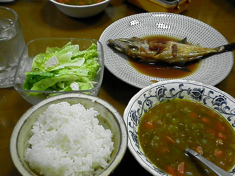 2010年4月19日夕食