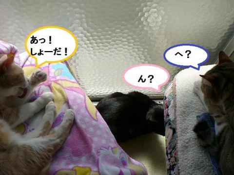 雲丹専務&きなっちゃん社長&ささっちゃん部長