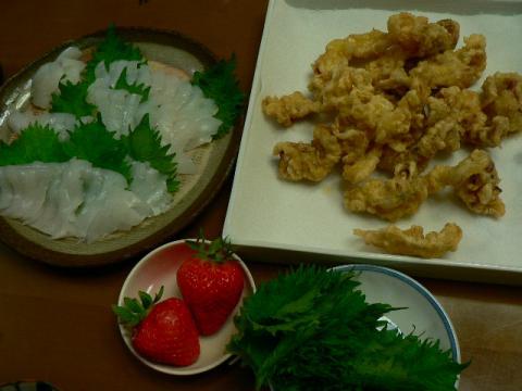2009年2月23日夕食