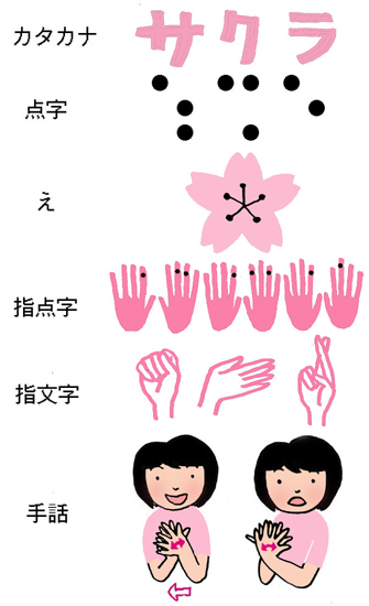 sakuraのコピ