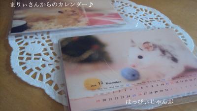 DSC04673_convert_20110105043645.jpg