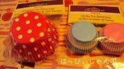 DSC06935_convert_20110222015006.jpg