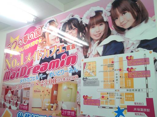 NEC_0306.jpg
