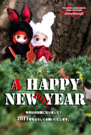 20110101_002.jpg