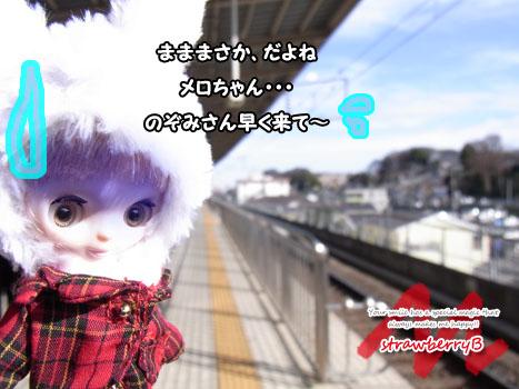 20110108_003.jpg