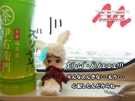 20110108_005.jpg